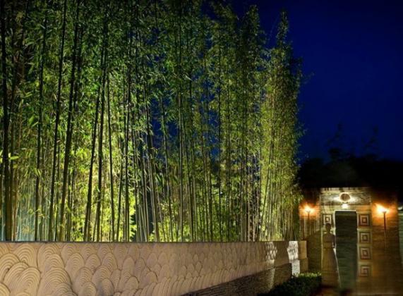 即建立在东南亚园林景观空间结构上的具有中国人认同
